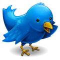 BlogPictureTwitterificBird